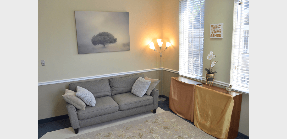 HopeSpring Hope Room: Adult Psychotherapy